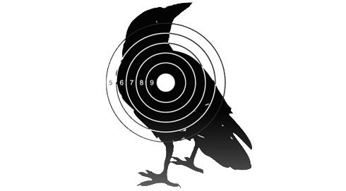 Охота на ворон переросла в отдельное движение
