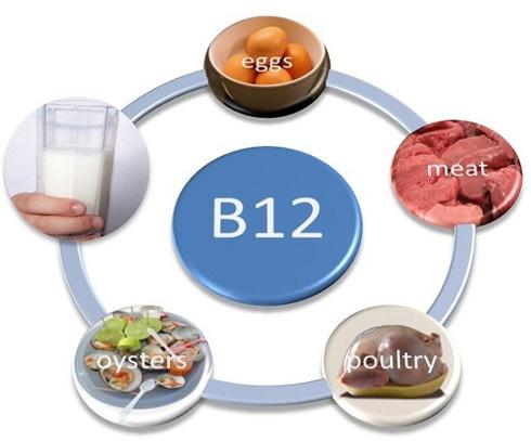 Для чего нужен витамин B12?
