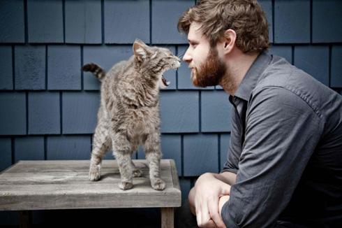 Зрительный контакт человека с кошкой